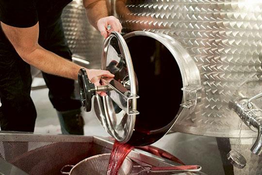 En dag i vinfabriken - skapa ditt eget vin